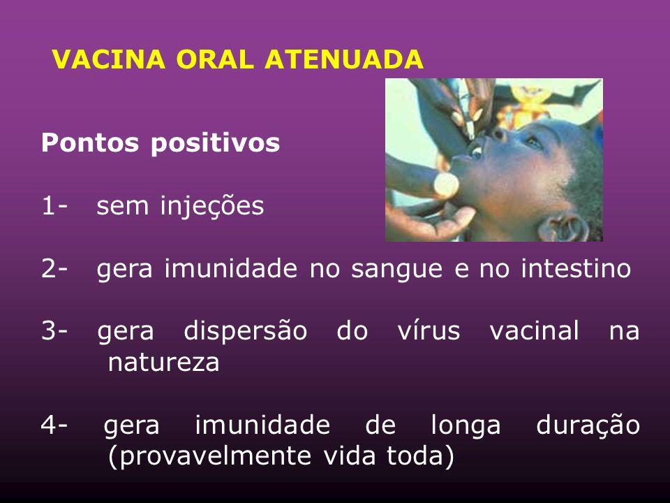 VACINA ORAL ATENUADA Pontos positivos. 1- sem injeções. 2- gera imunidade no sangue e no intestino.