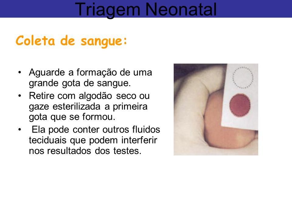 Triagem Neonatal Coleta de sangue: