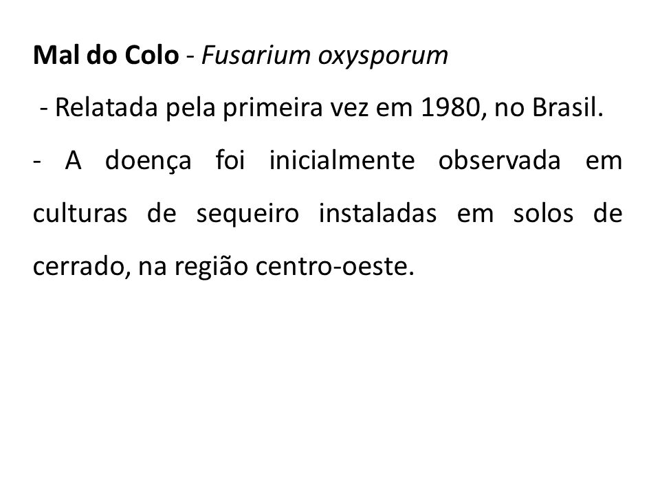 Mal do Colo - Fusarium oxysporum