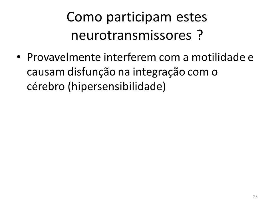 Como participam estes neurotransmissores