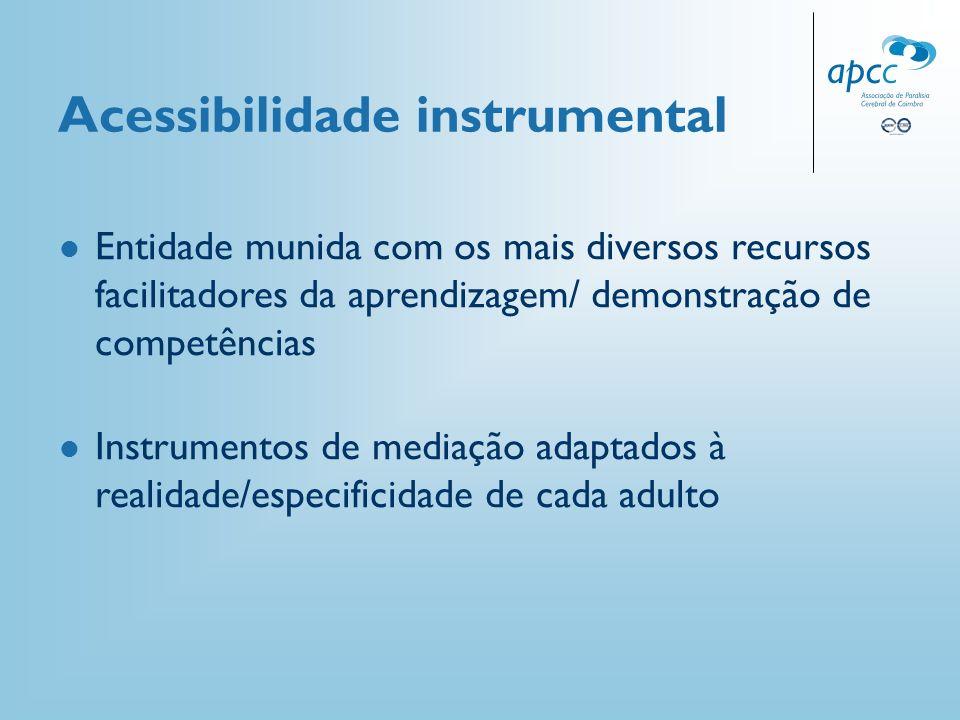 Acessibilidade instrumental