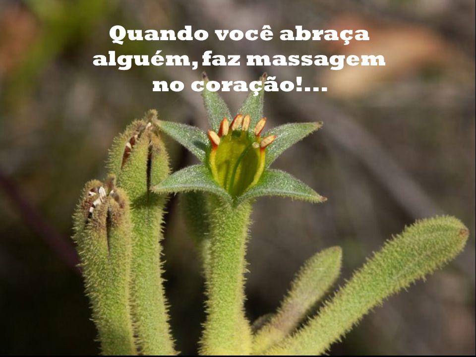 Quando você abraça alguém, faz massagem no coração!...