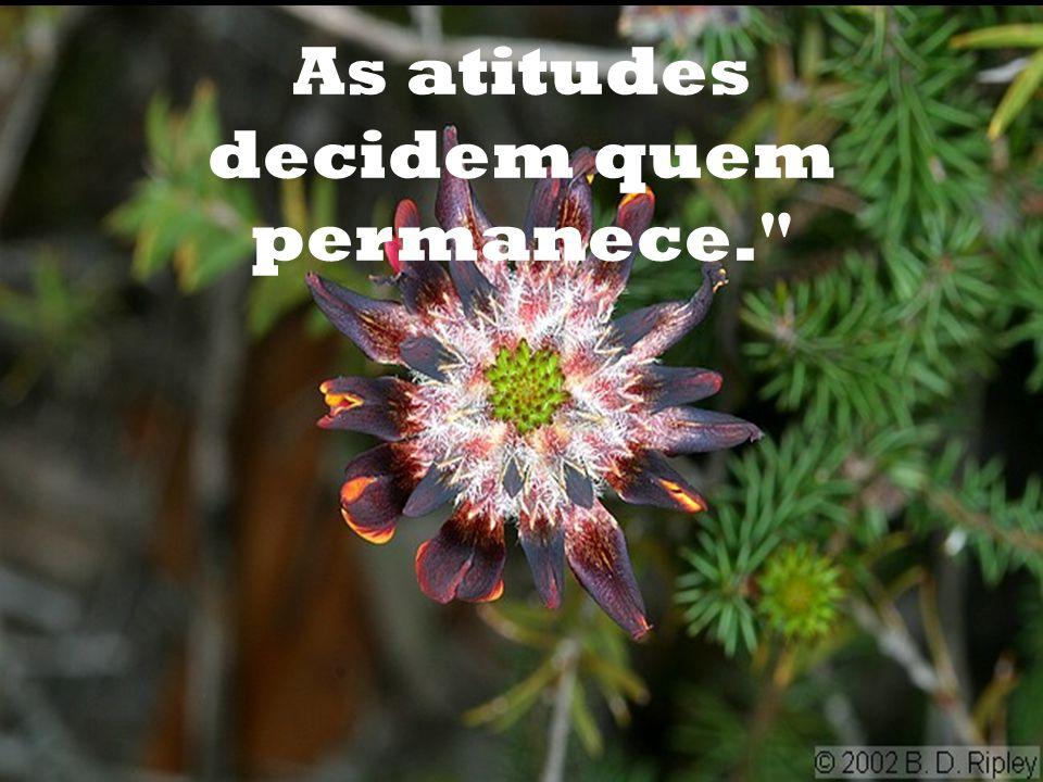 As atitudes decidem quem permanece.