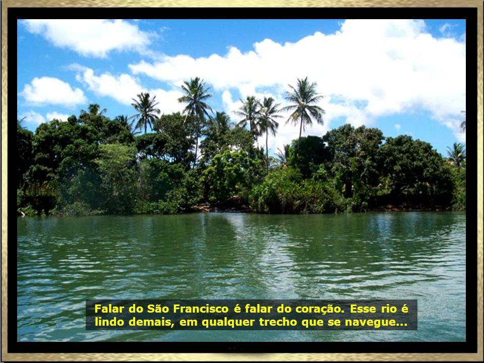 P0016978 - ARACAJU - COMEÇO PASSEIO FOZ DO RIO SÃO FRANCISCO-690