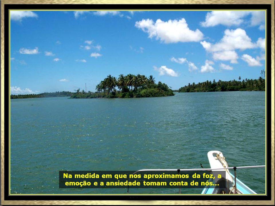 P0016992 - ARACAJU - RIO SÃO FRANCISCO - ILHAS-690