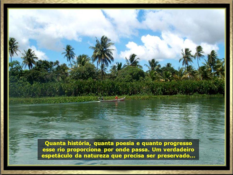 P0016981 - ARACAJU - RIO SÃO FRANCISCO RUMO À FOZ-690
