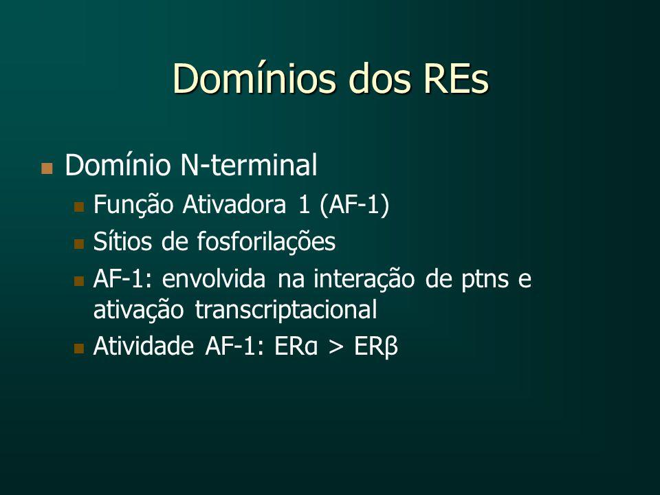 Domínios dos REs Domínio N-terminal Função Ativadora 1 (AF-1)