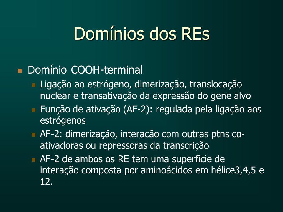Domínios dos REs Domínio COOH-terminal