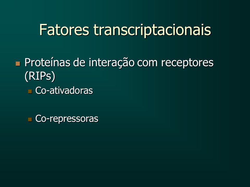 Fatores transcriptacionais