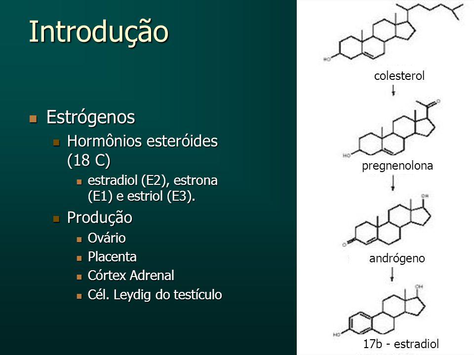 Introdução Estrógenos Hormônios esteróides (18 C) Produção