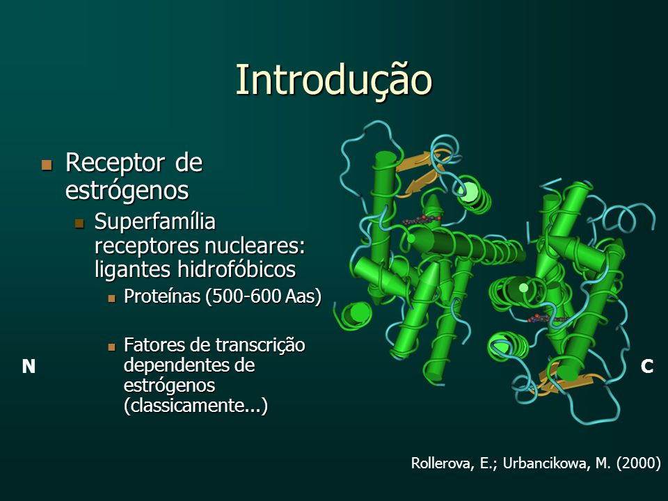 Introdução Receptor de estrógenos