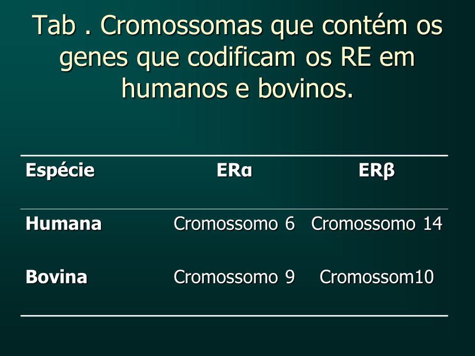 Tab . Cromossomas que contém os genes que codificam os RE em humanos e bovinos.