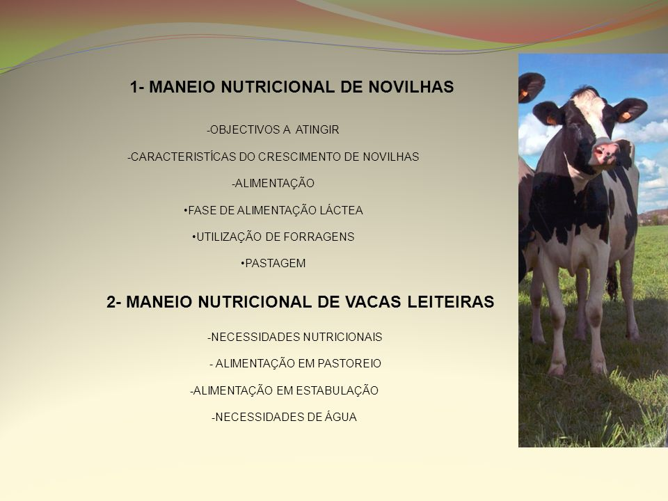 1- MANEIO NUTRICIONAL DE NOVILHAS