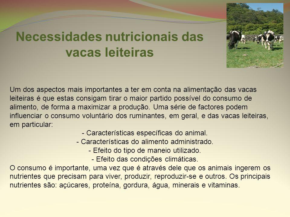 Necessidades nutricionais das vacas leiteiras
