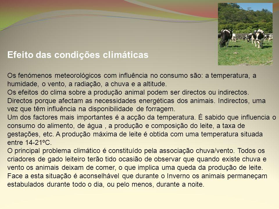 Efeito das condições climáticas