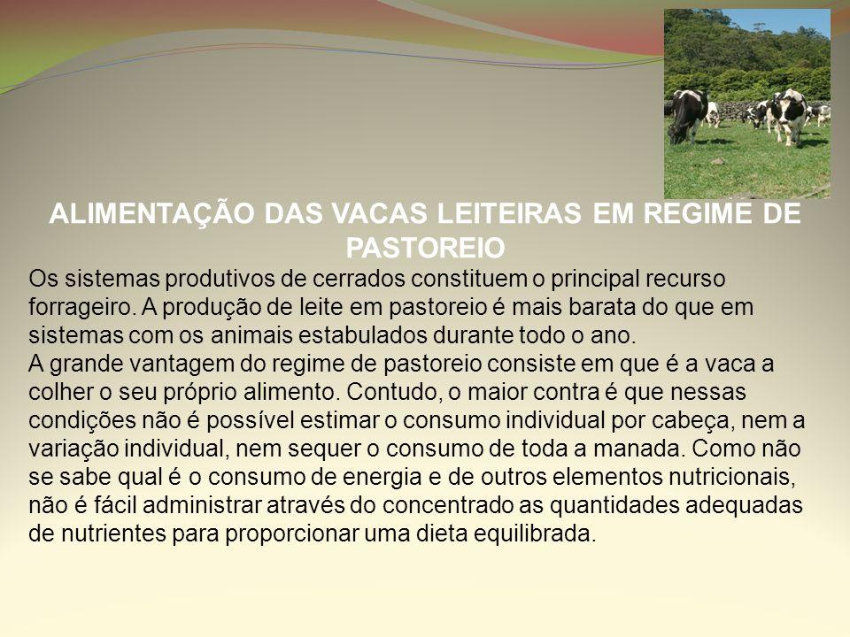 ALIMENTAÇÃO DAS VACAS LEITEIRAS EM REGIME DE PASTOREIO