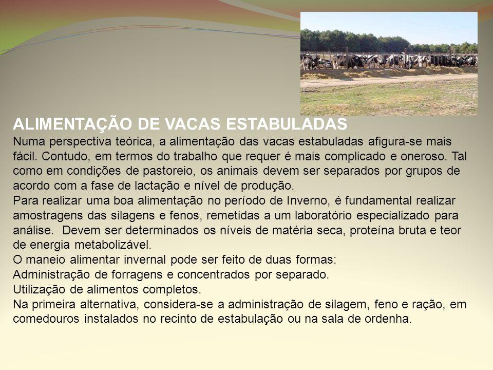 ALIMENTAÇÃO DE VACAS ESTABULADAS