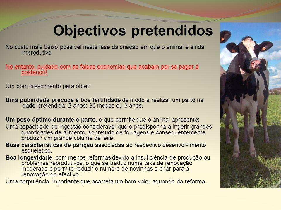 Objectivos pretendidos