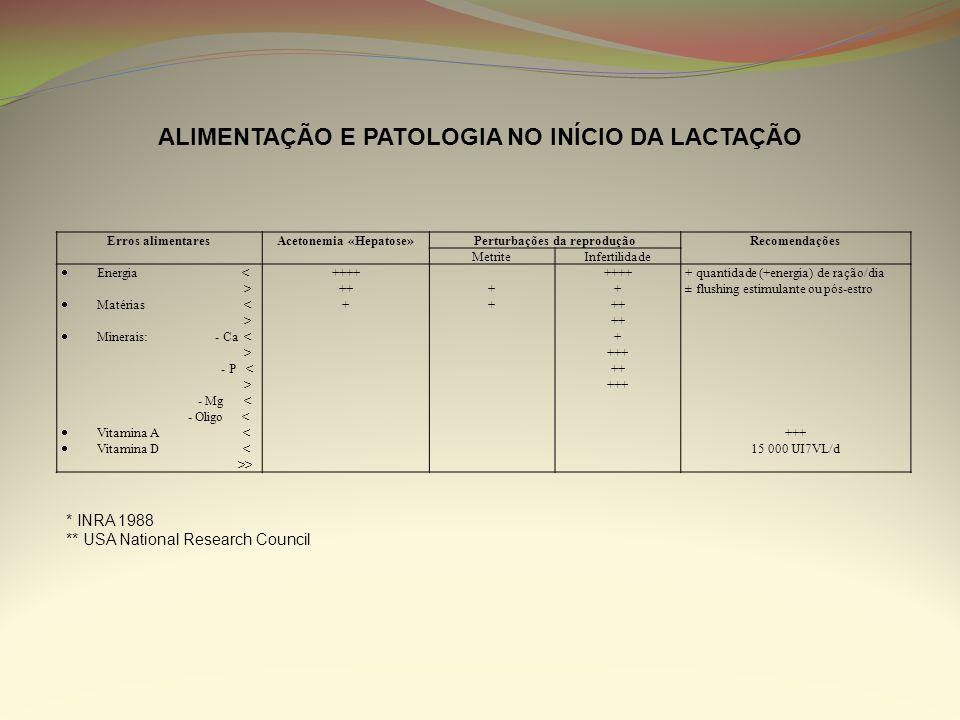 ALIMENTAÇÃO E PATOLOGIA NO INÍCIO DA LACTAÇÃO