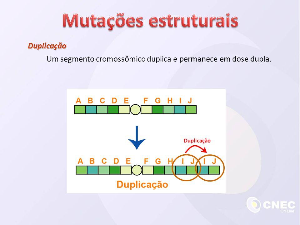 Mutações estruturais Duplicação