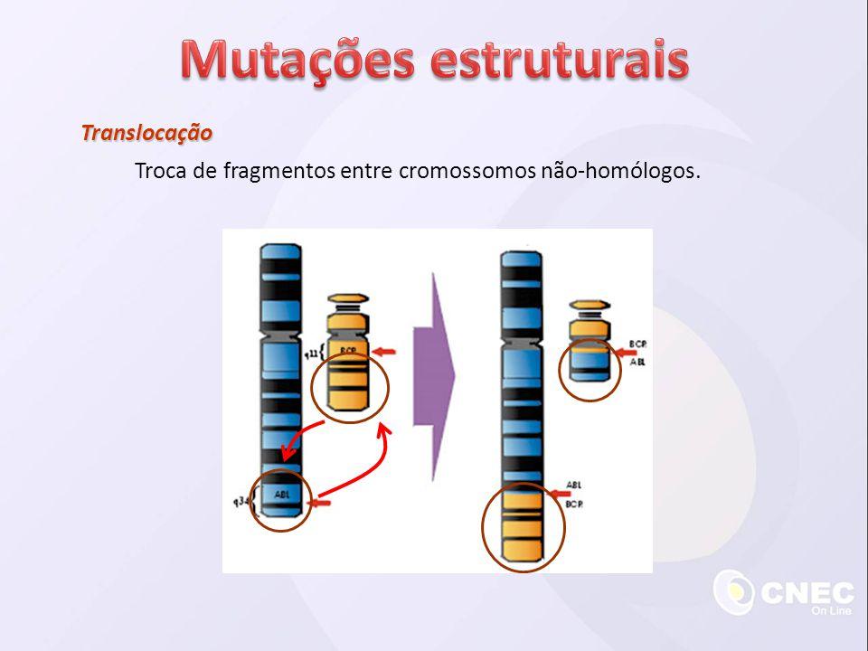 Mutações estruturais Translocação