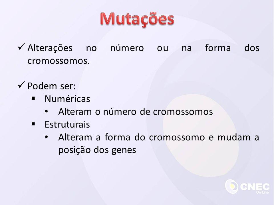 Mutações Alterações no número ou na forma dos cromossomos. Podem ser: