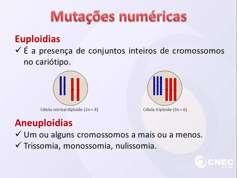 Mutações numéricas Euploidias Aneuploidias