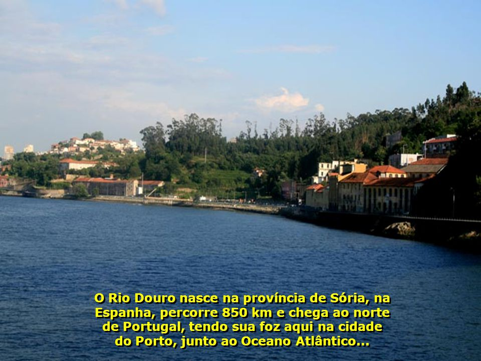 IMG_2154 - PORTUGAL - PORTO - RIO DOURO-700