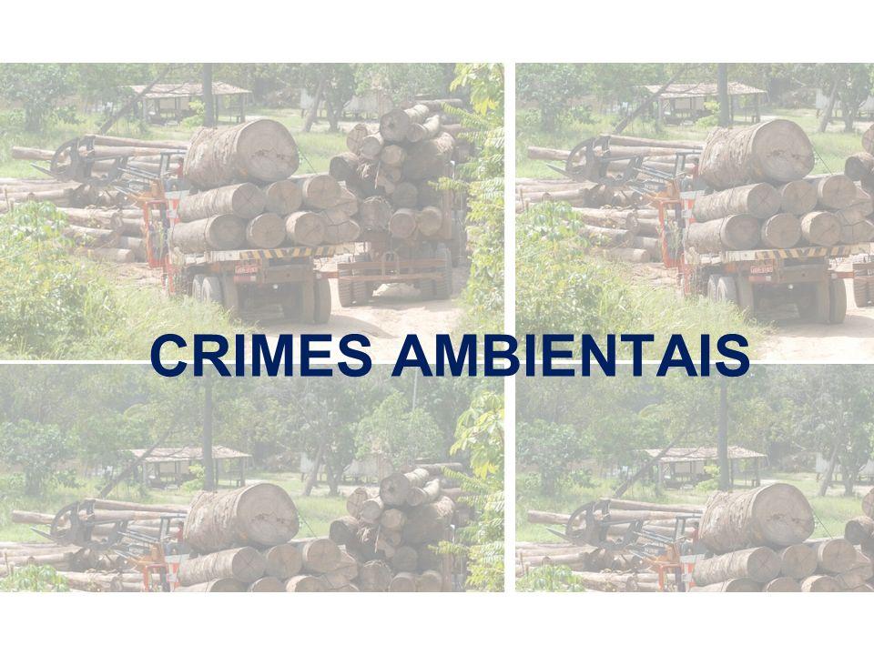 CRIMES AMBIENTAIS