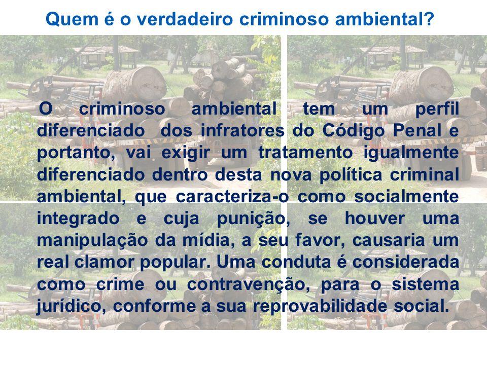 Quem é o verdadeiro criminoso ambiental