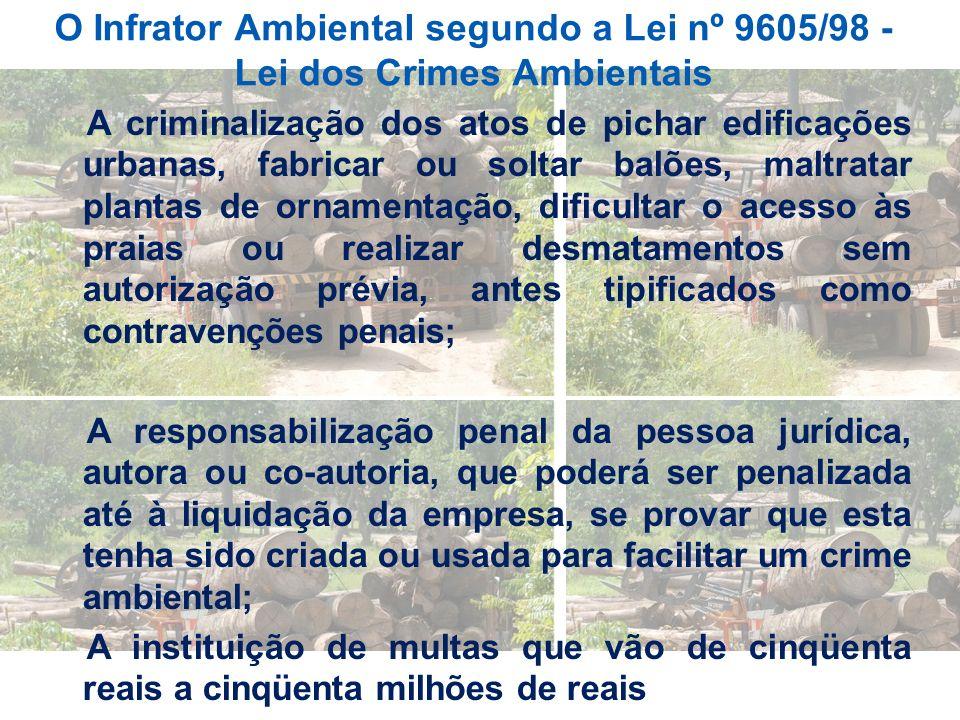 O Infrator Ambiental segundo a Lei nº 9605/98 - Lei dos Crimes Ambientais