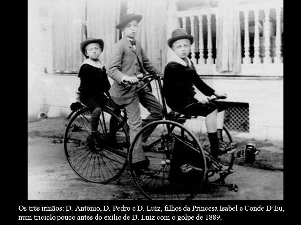 Os três irmãos: D. Antônio, D. Pedro e D