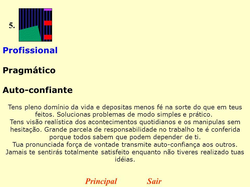 5. Profissional Pragmático Auto-confiante Principal Sair