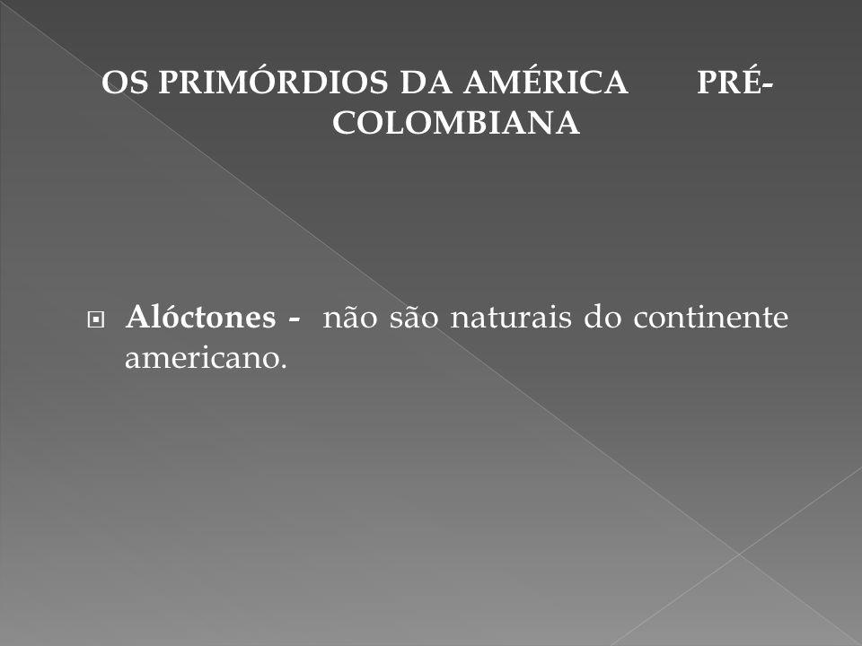 OS PRIMÓRDIOS DA AMÉRICA PRÉ- COLOMBIANA