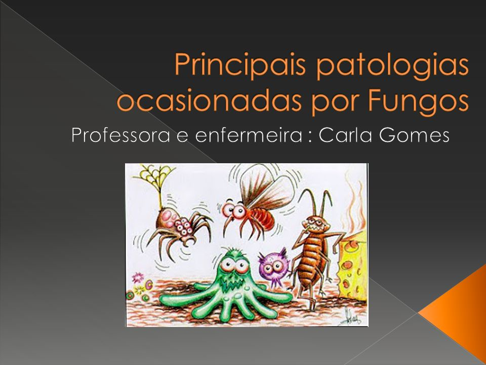 Principais patologias ocasionadas por Fungos