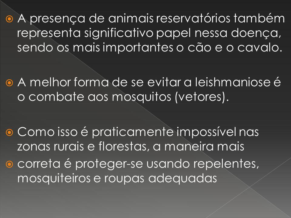 A presença de animais reservatórios também representa significativo papel nessa doença, sendo os mais importantes o cão e o cavalo.