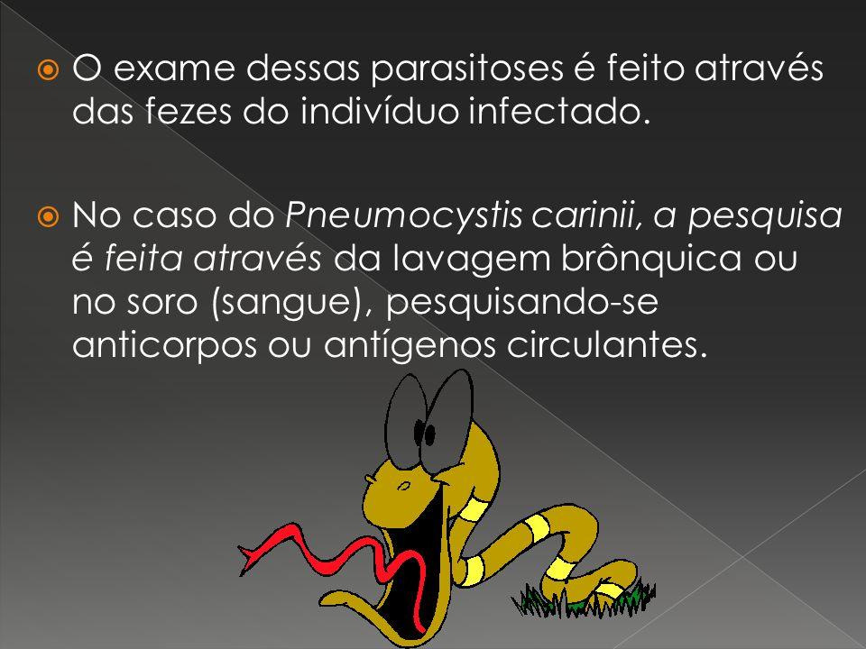 O exame dessas parasitoses é feito através das fezes do indivíduo infectado.