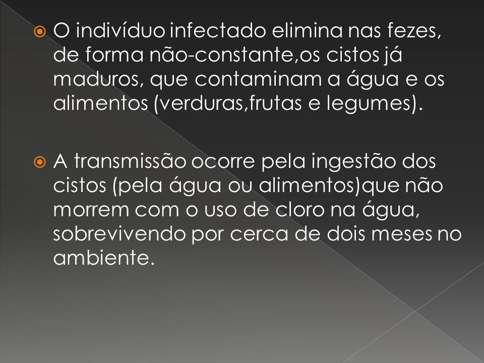 O indivíduo infectado elimina nas fezes, de forma não-constante,os cistos já maduros, que contaminam a água e os alimentos (verduras,frutas e legumes).