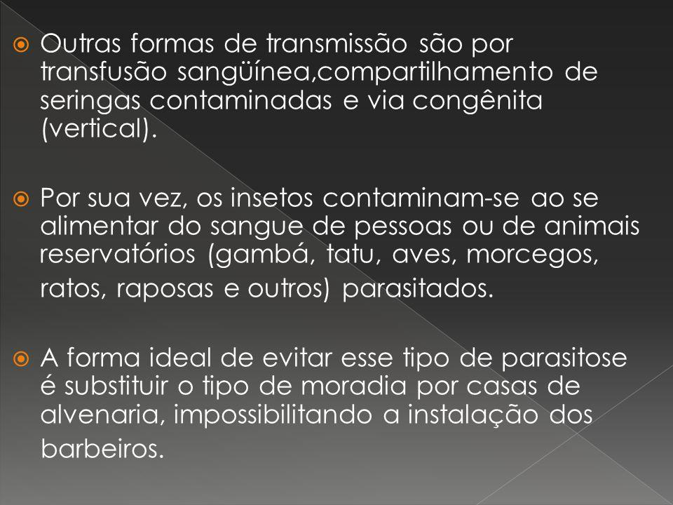 Outras formas de transmissão são por transfusão sangüínea,compartilhamento de seringas contaminadas e via congênita (vertical).