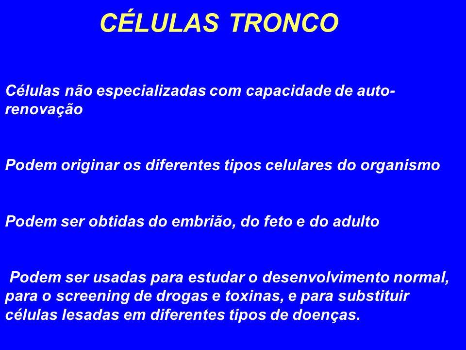 CÉLULAS TRONCO Células não especializadas com capacidade de auto-renovação. Podem originar os diferentes tipos celulares do organismo.