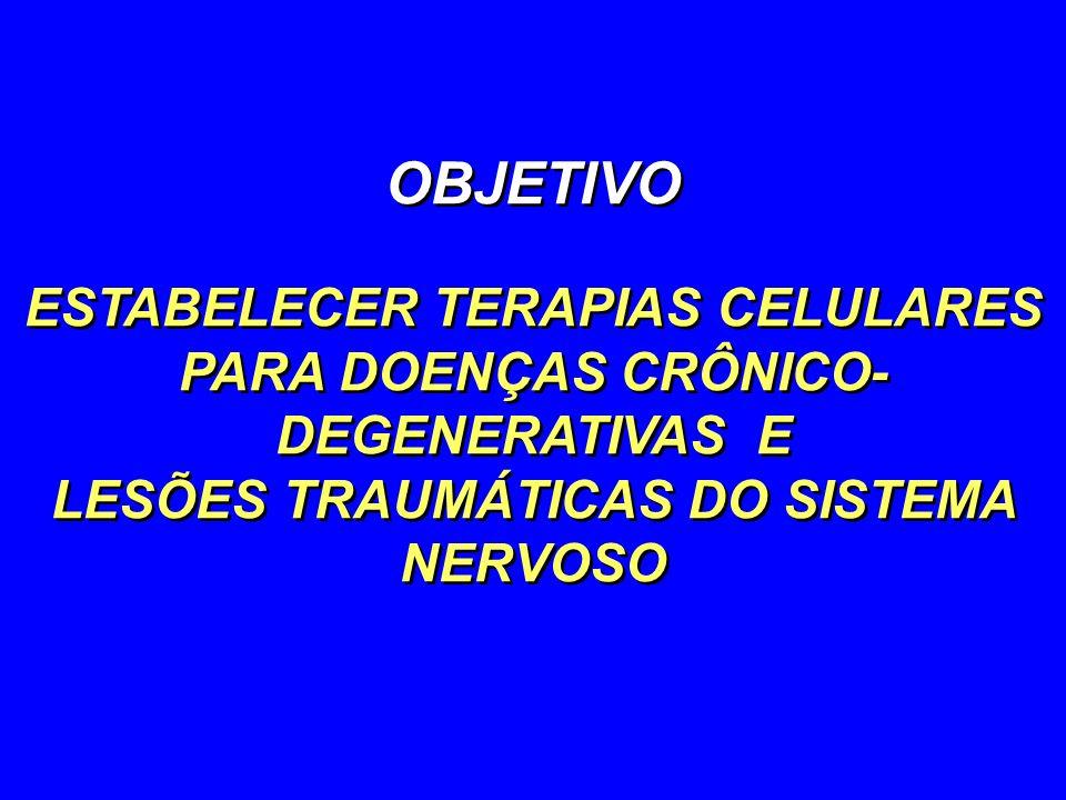 OBJETIVO ESTABELECER TERAPIAS CELULARES PARA DOENÇAS CRÔNICO-DEGENERATIVAS E.