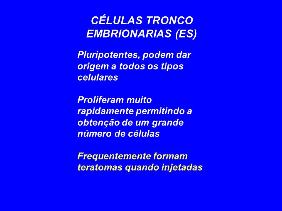 CÉLULAS TRONCO EMBRIONARIAS (ES)