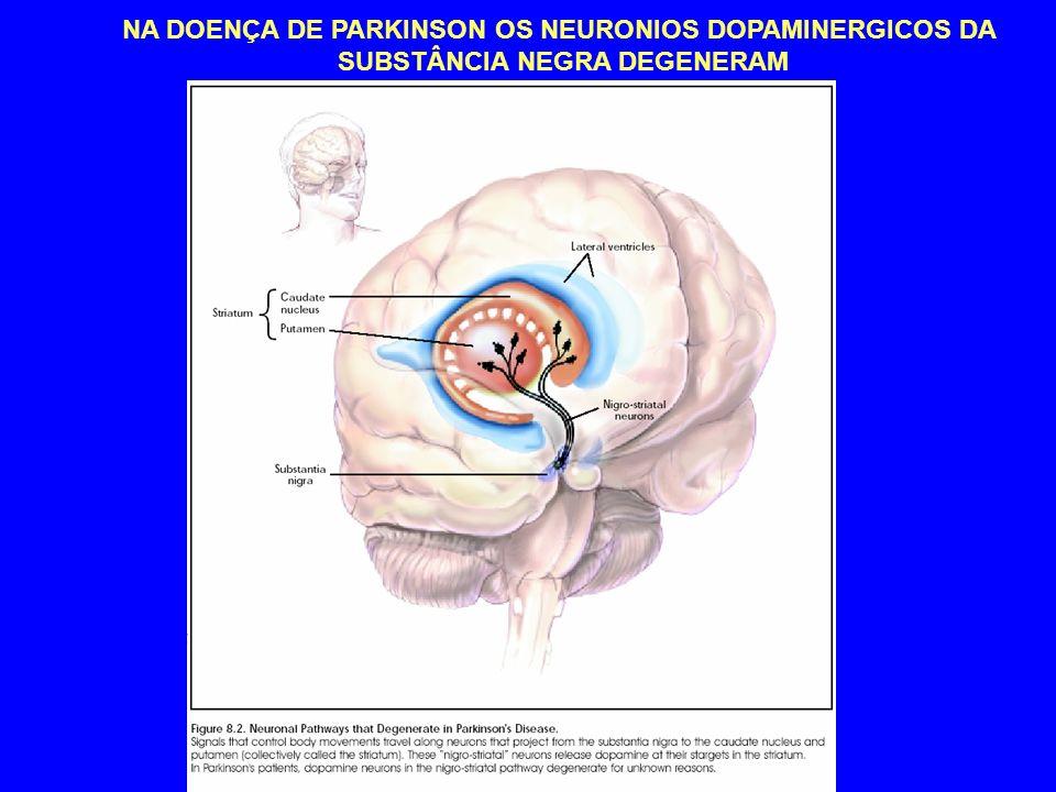 NA DOENÇA DE PARKINSON OS NEURONIOS DOPAMINERGICOS DA