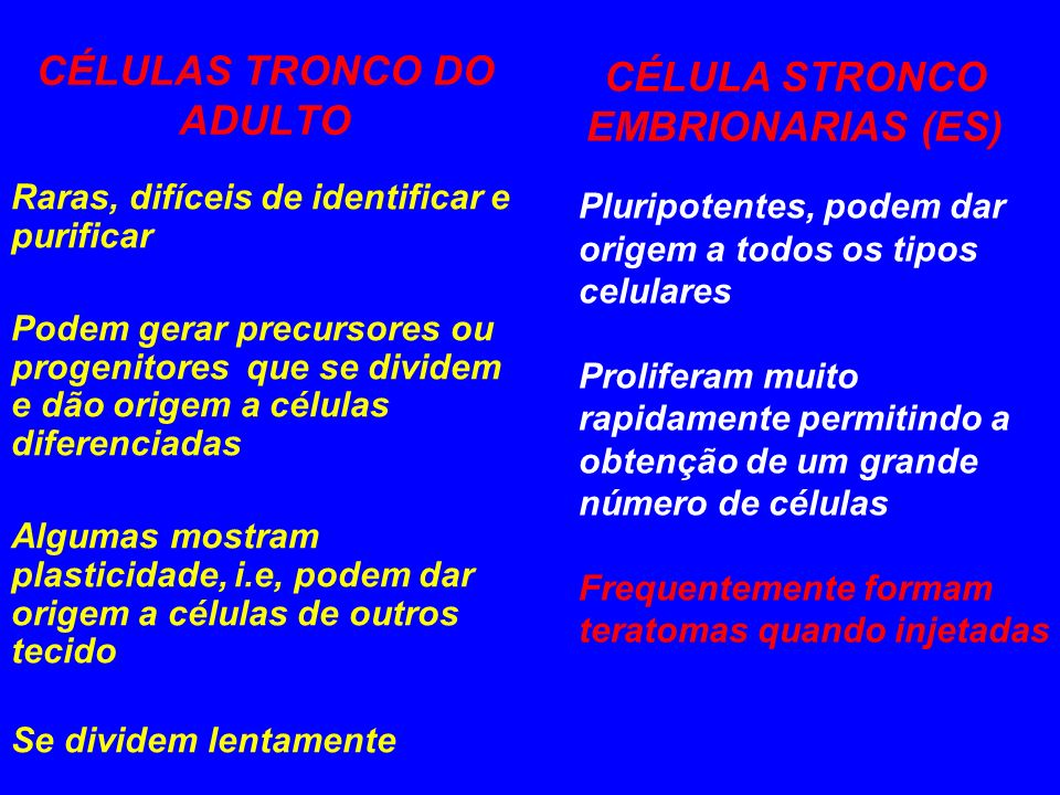 CÉLULAS TRONCO DO ADULTO