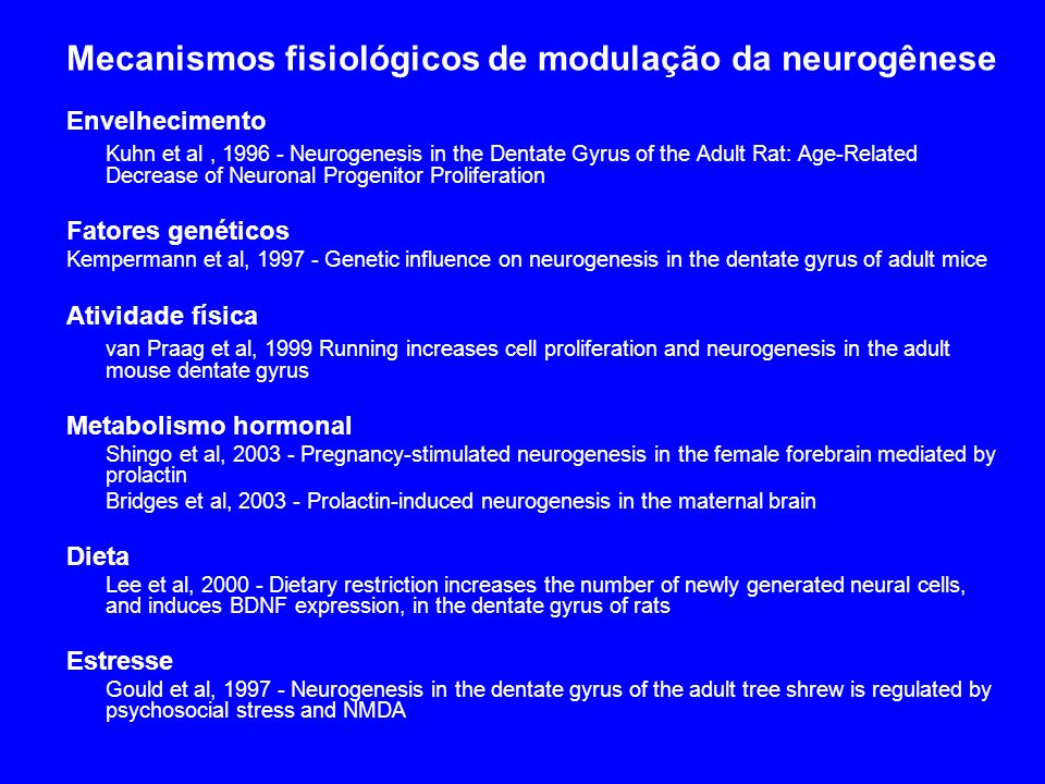 Mecanismos fisiológicos de modulação da neurogênese