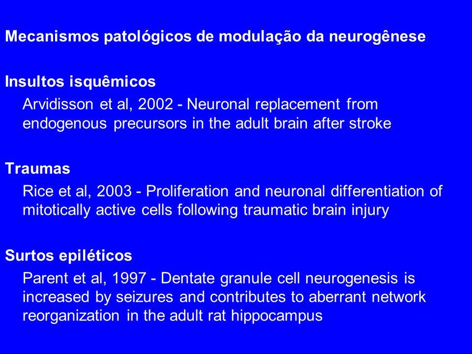 Mecanismos patológicos de modulação da neurogênese