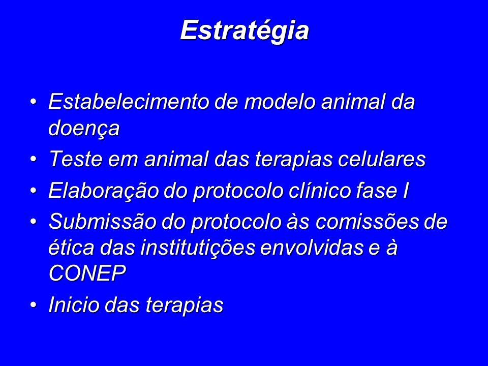 Estratégia Estabelecimento de modelo animal da doença