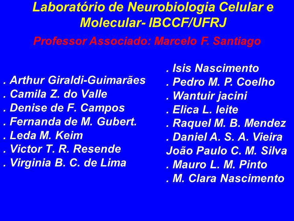 Laboratório de Neurobiologia Celular e Molecular- IBCCF/UFRJ