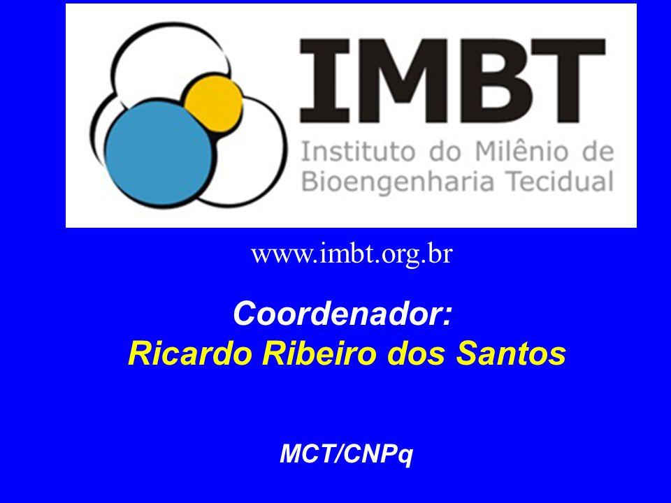 Ricardo Ribeiro dos Santos