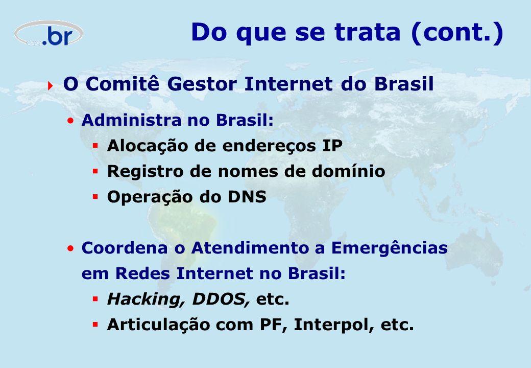 Do que se trata (cont.) O Comitê Gestor Internet do Brasil